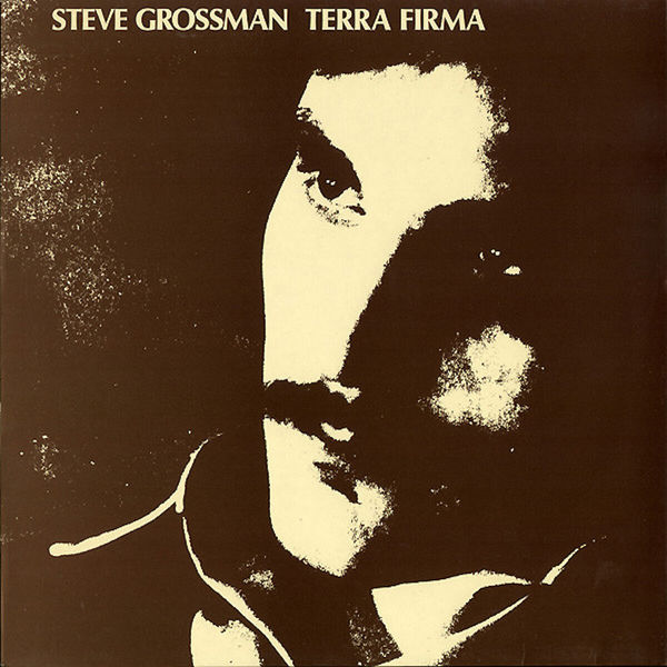 Steve Grossman - Terra Firma