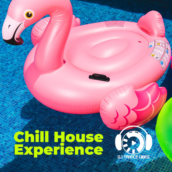 Dj Trance Vibes - Chill House Experience: Feel the Upcoming Summer Vibes