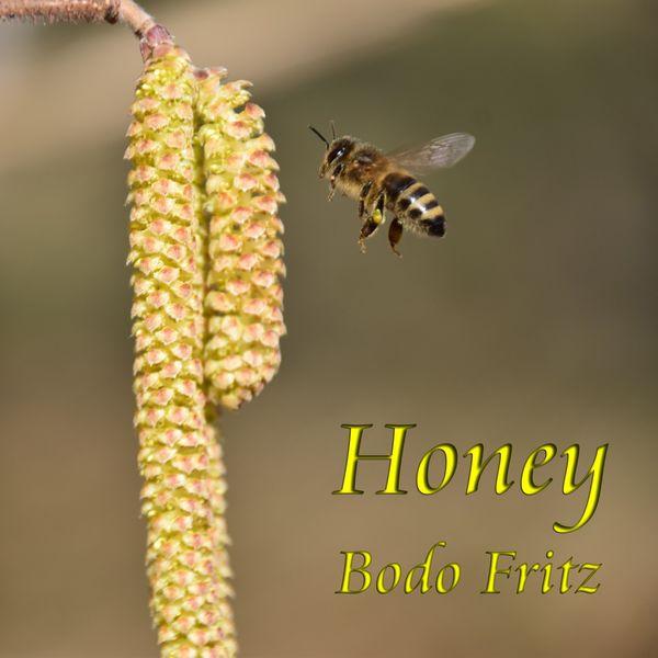 Bodo Fritz - Honey