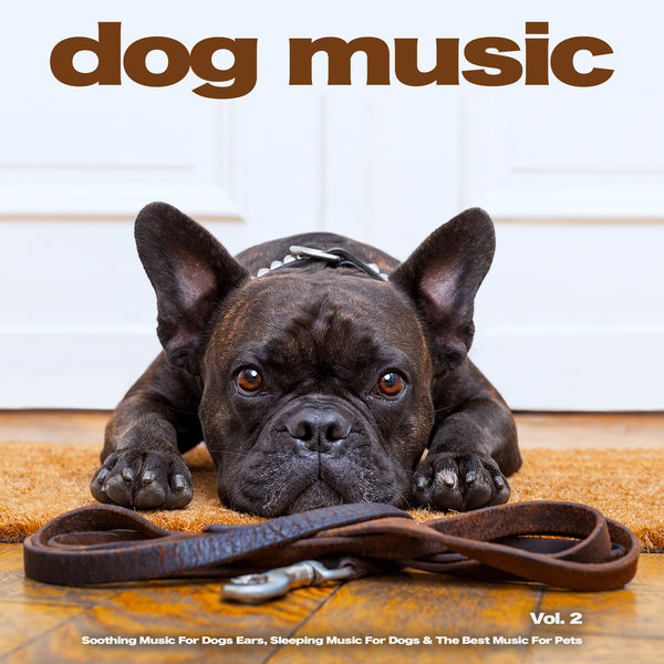 Dog Music - Dog Music: Soothing Music For Dogs Ears, Sleeping Music For Dogs & The Best Music For Pets, Vol. 2