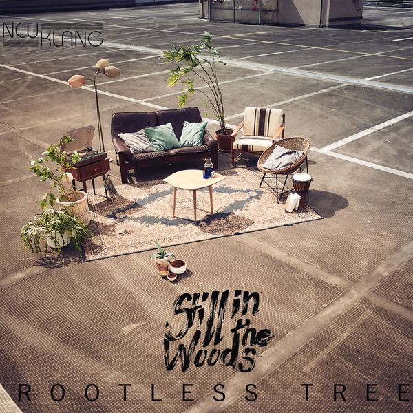 Still in the Woods - Rootless Tree
