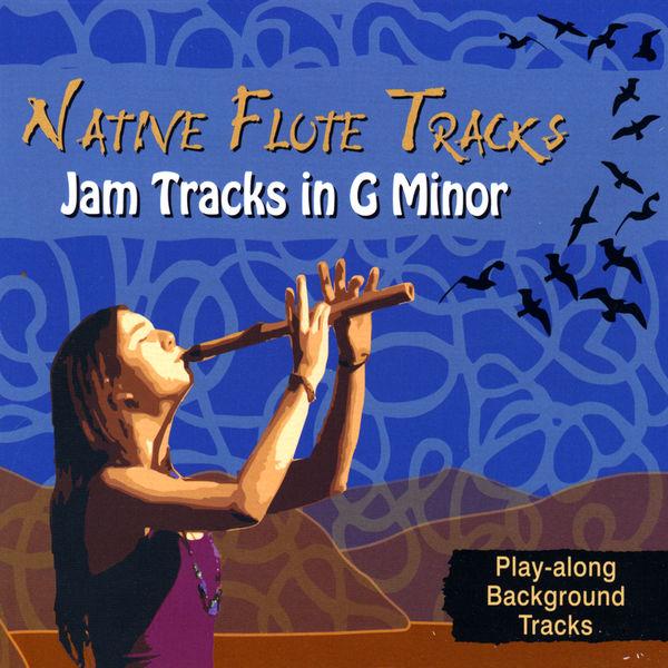 Various Artists - Jam Tracks in G Minor