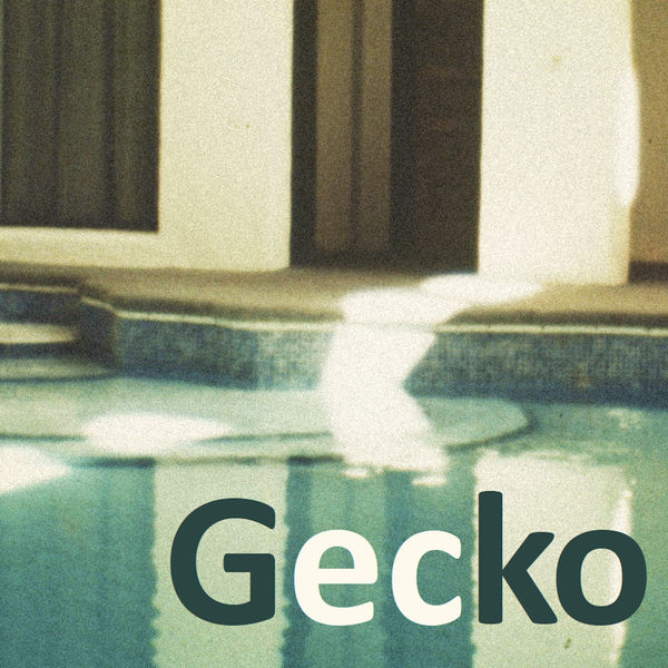 Van der Brügge - Gecko