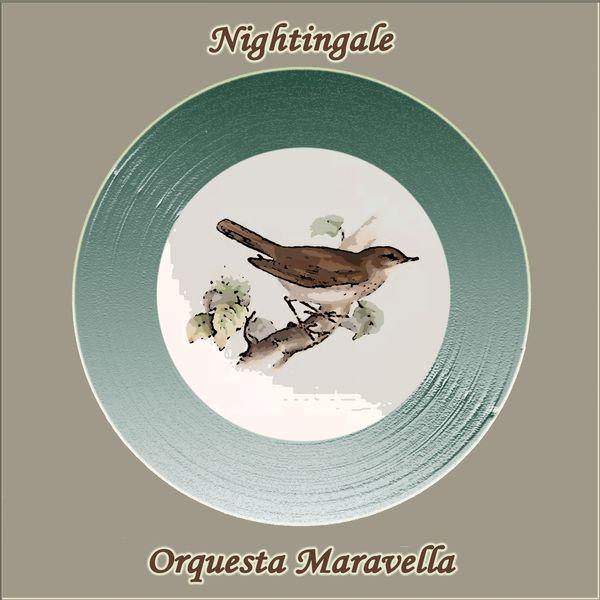 Orquesta Maravella - Nightingale