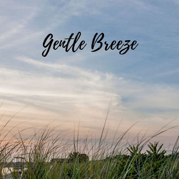 Nature Sounds XLE Library - Gentle Breeze