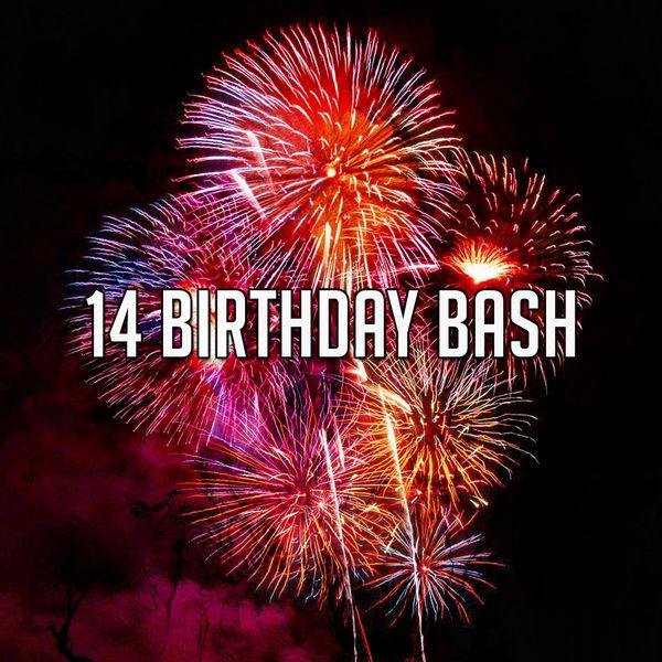 Happy Birthday - 14 Birthday Bash