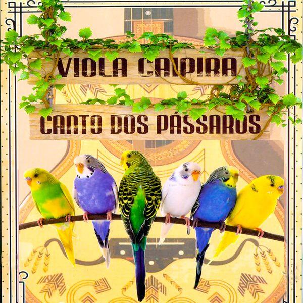 André Magalhães - Viola Caipira / O Canto dos Pássaros