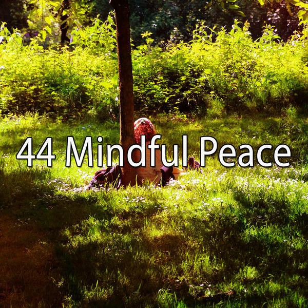 Yoga Workout Music - 44 Mindful Peace