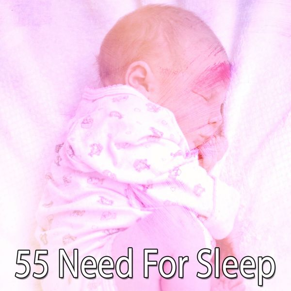 Spa Music Paradise - 55 Need for Sleep