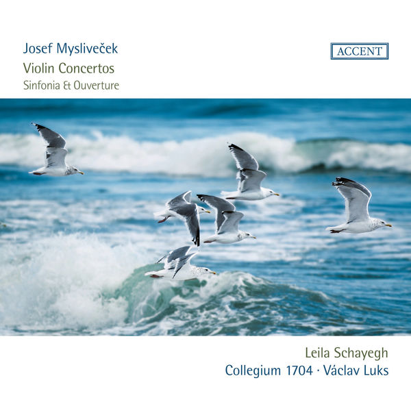 Leila Schayegh - Josef Mysliveček : Violin Concertos, Sinfonia, Ouverture