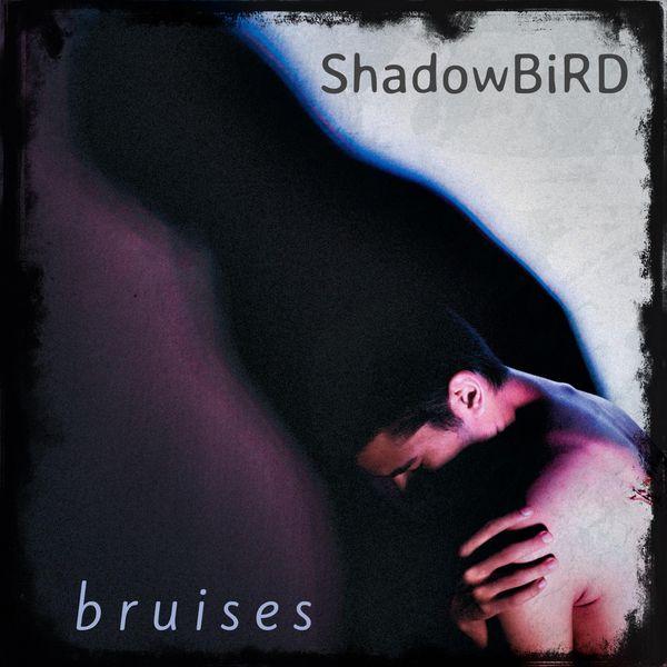 Shadowbird - Bruises (Instrumental)