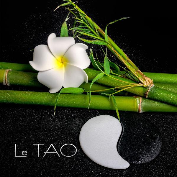 Ensemble de Musique Zen Relaxante - Le TAO - Une atmosphère à la détente, La tradition taoïste, Source de bien-être et de paix intérieure