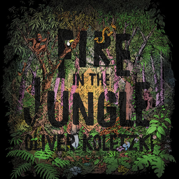 Oliver Koletzki - Fire in the Jungle