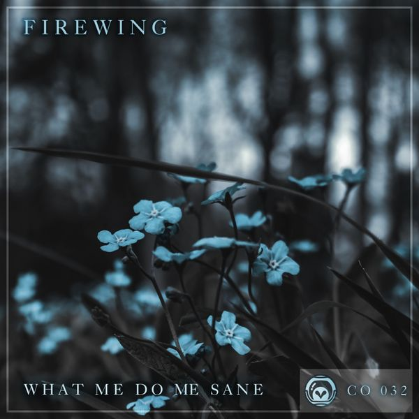 FireWing - What Me Do Me Sane