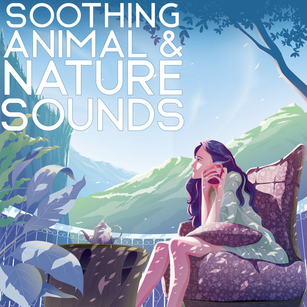 Nature Sounds Relaxation: Music for Sleep, Meditation, Massage Therapy, Spa - Soothing Animal & Nature Sounds - Relaxation Music for Stress Relief, Peaceful Place, Clear Your Mind, Harmony of Senses, Water Sounds, Birdsong, Mother Nature
