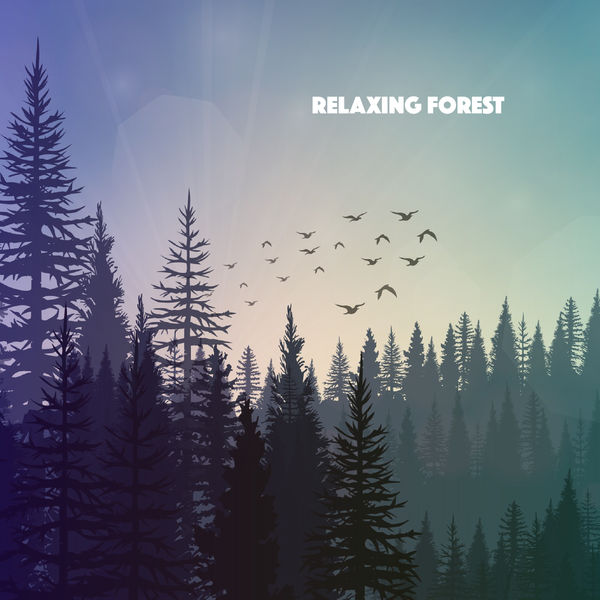 Relaxing Forest | Nature Sounds – Download and listen to the album
