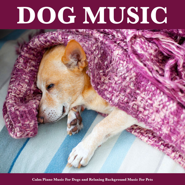 Dog Music - Dog Music: Calm Piano Music For Dogs and Relaxing Background Music For Pets