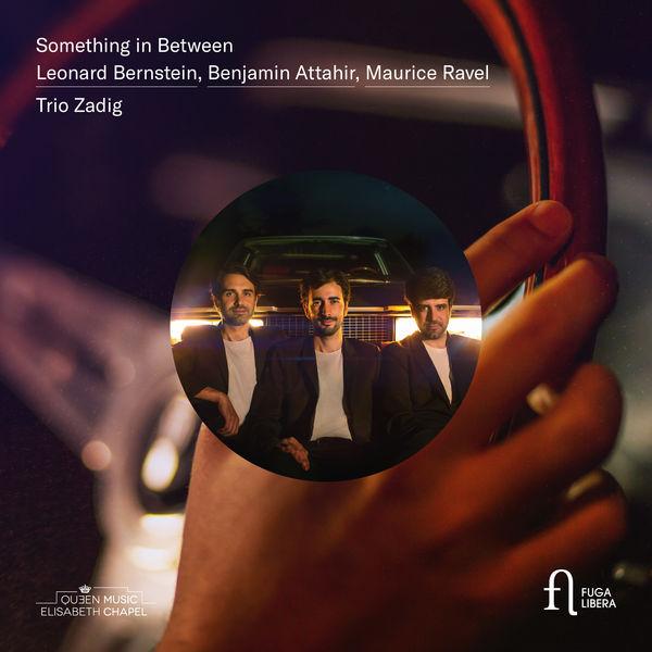 Trio Zadig - Something in Between