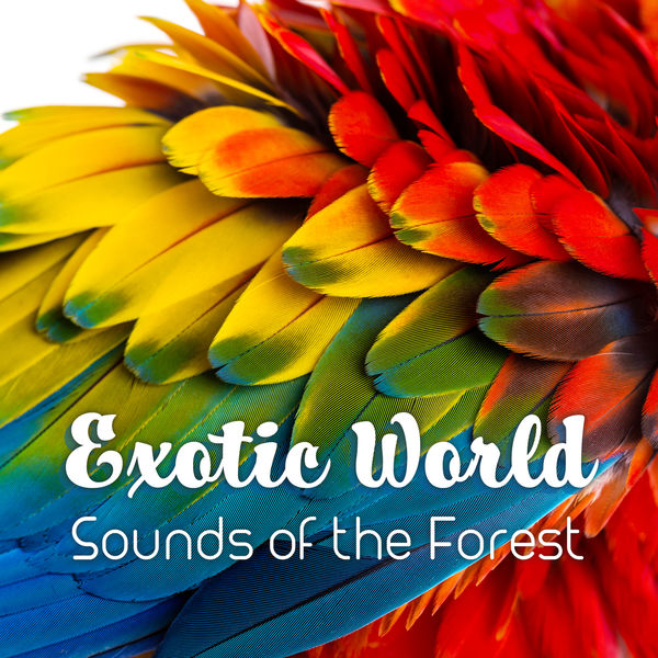 Album Exotic World - Sounds of the Forest, Sea, Birds