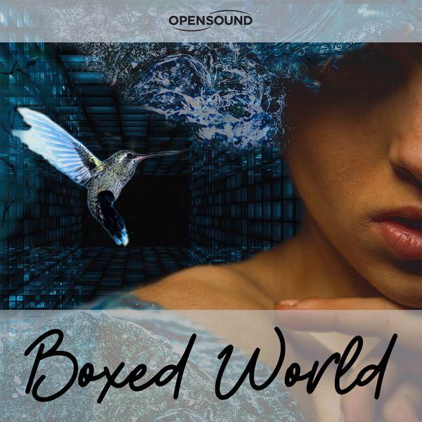 Raffaella Capogna, Silvio Piersanti - Boxed World (Music for Movie)