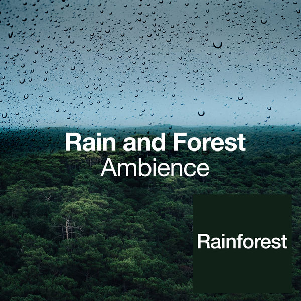 Rainforest - Rain and Forest Ambience
