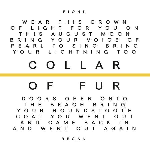 Fionn Regan - Collar of Fur