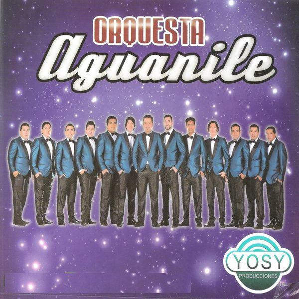 Orquesta Aguanile - Orquesta Aguanile