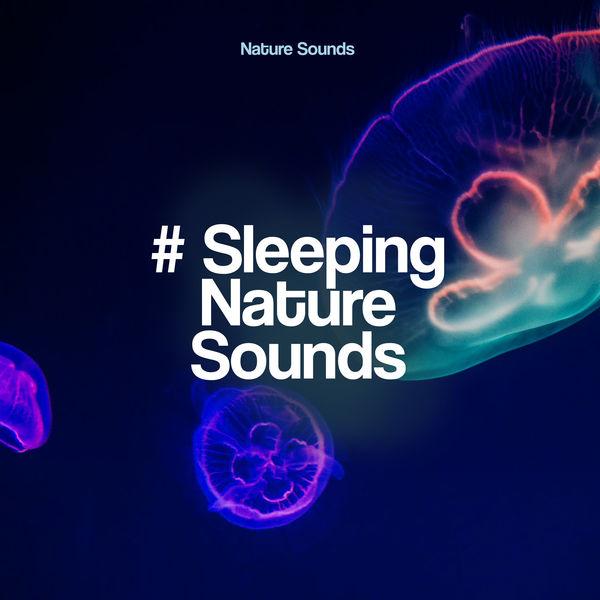 Nature Sounds - # Sleeping Nature Sounds