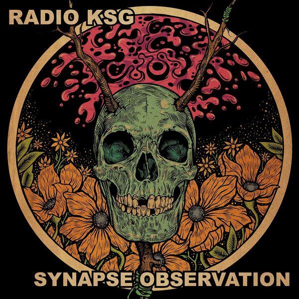 Radio KSG - Synapse Observation