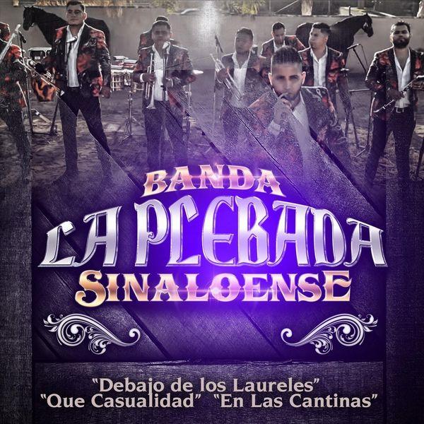 Banda la Plebada Sinaloense - Popurri: Debajo de los Laureles / Que Casualidad / En las Cantinas