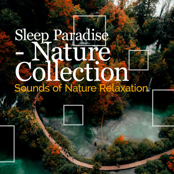 Sounds of Nature Relaxation - Sleep Paradise - Nature Collection