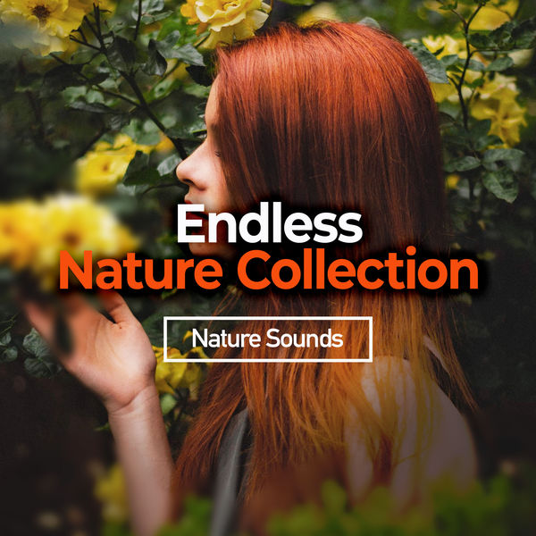 Nature Sounds - Endless Nature Collection