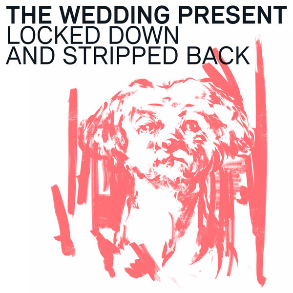 The Wedding Present Locked Down and Stripped Back