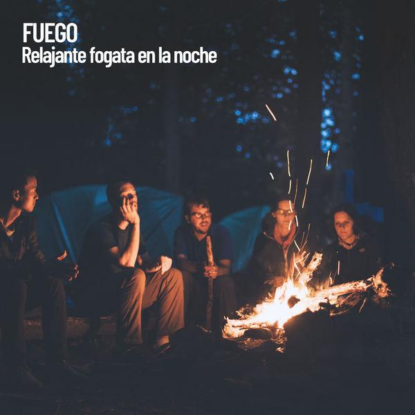 Meditation Music Zone - Fuego: Relajante fogata en la noche