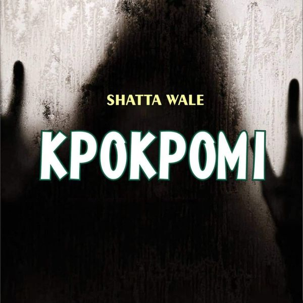 Shatta Wale - Kpokpomi