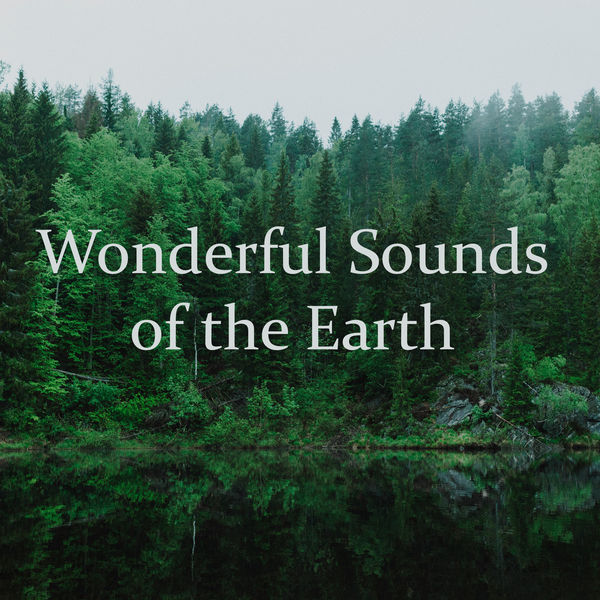 Odyssey for Relax Music Universe - Wonderful Sounds of the Earth – Music for Healing Through Sound and Touch
