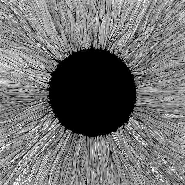 Vola|Witness