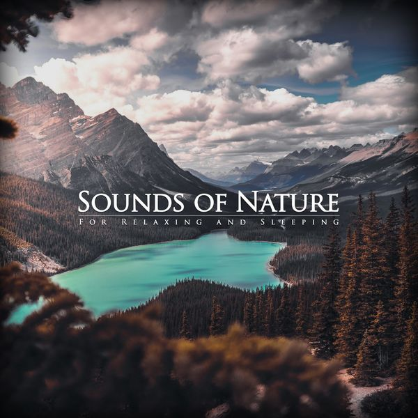 Nature Studio - Natural Sounds for Relaxing and Sleeping
