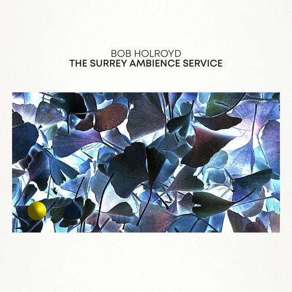 Bob Holroyd The Surrey Ambience Service