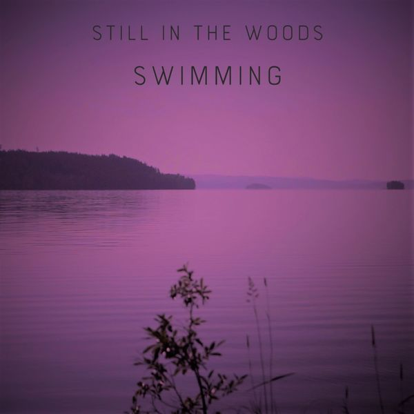 Still in the Woods - Swimming
