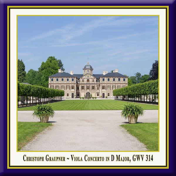 Agata Zieba - Graupner: Viola Concerto in D Major, GWV 314 (Live)
