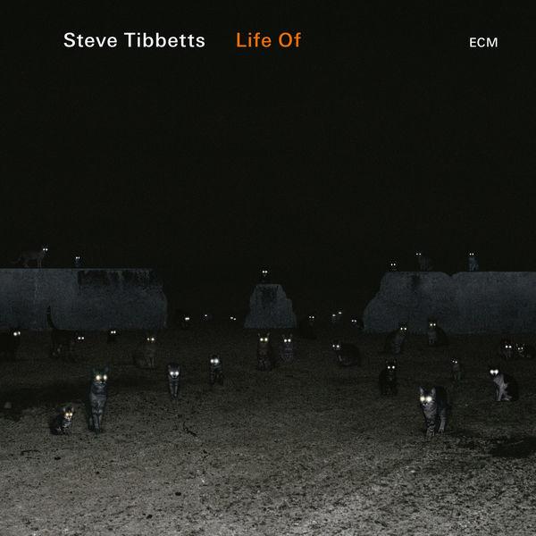 Steve Tibbetts - Bloodwork
