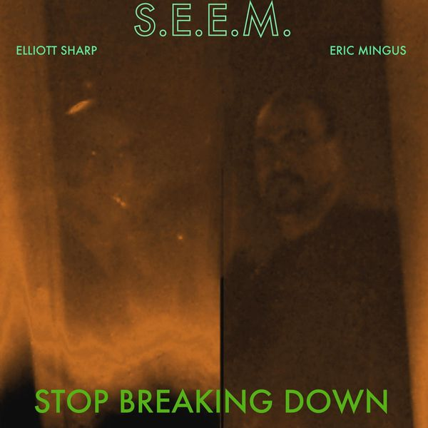 S.E.E.M. - Stop Breaking Down (feat. Elliott Sharp & Eric Mingus)