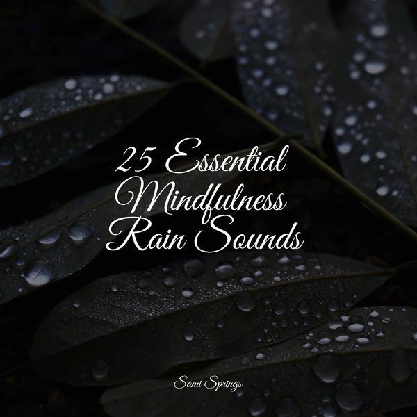 Tonal Meditation Collective - 25 Essential Mindfulness Rain Sounds