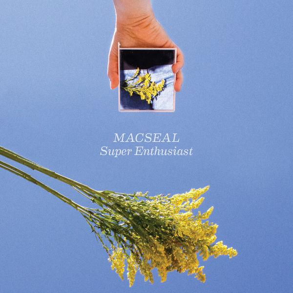 Macseal - Super Enthusiast