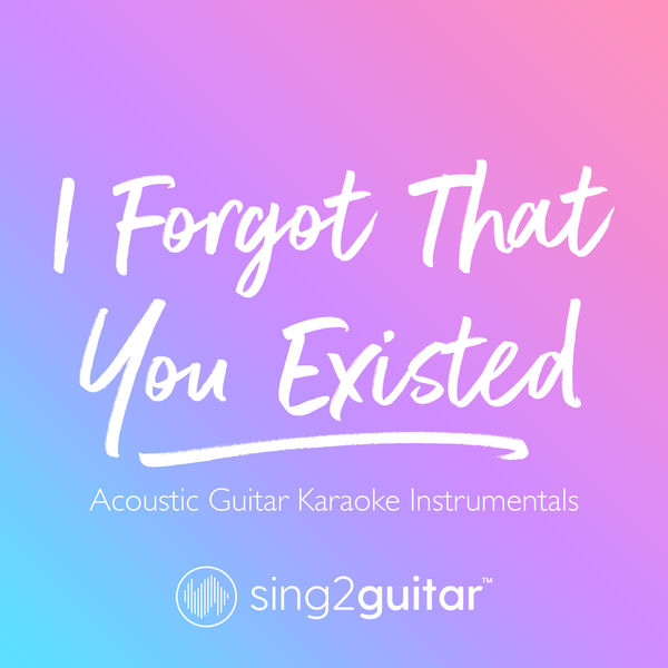 Sing2Guitar - I Forgot That You Existed