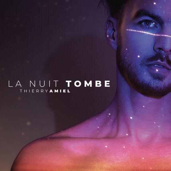 Thierry Amiel - La nuit tombe