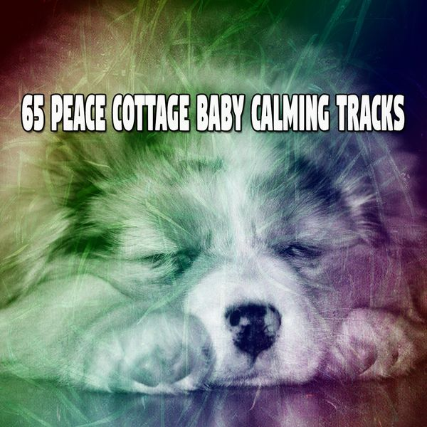 Relaxing With Sounds of Nature and Spa Music Natural White Noise Sound Therapy - 65 Peace Cottage Baby Calming Tracks