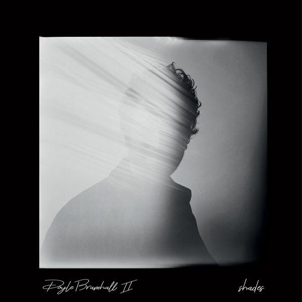 Doyle Bramhall II - Shades